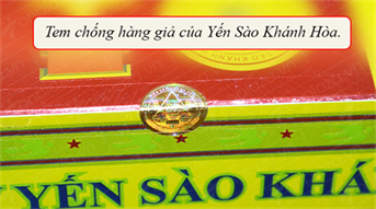 nuoc-yen-sao-khanh-hoa-sanest-co-duong-hop-6-lo 4