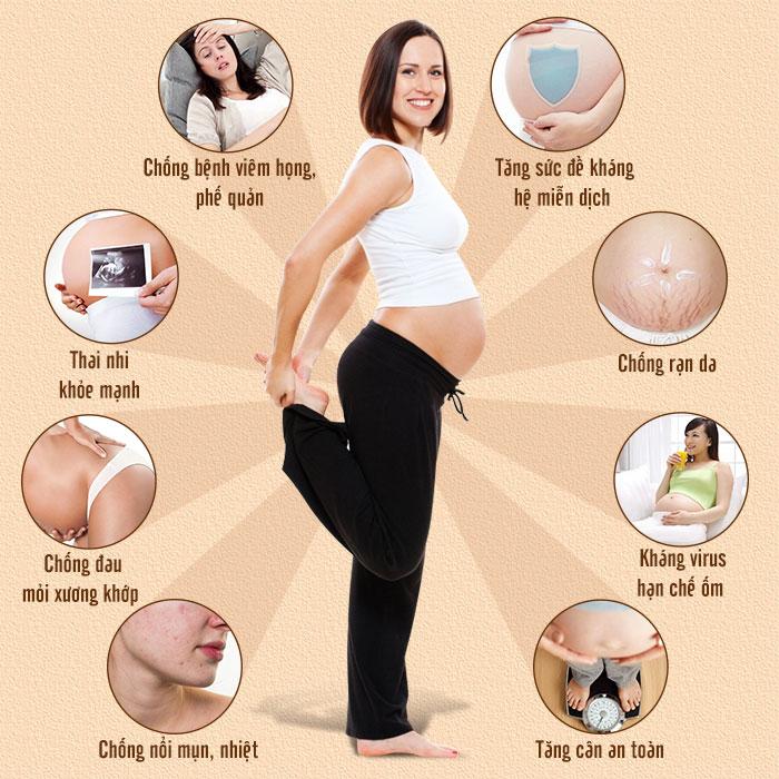 công dụng của yến đối với phụ nữ mang thai