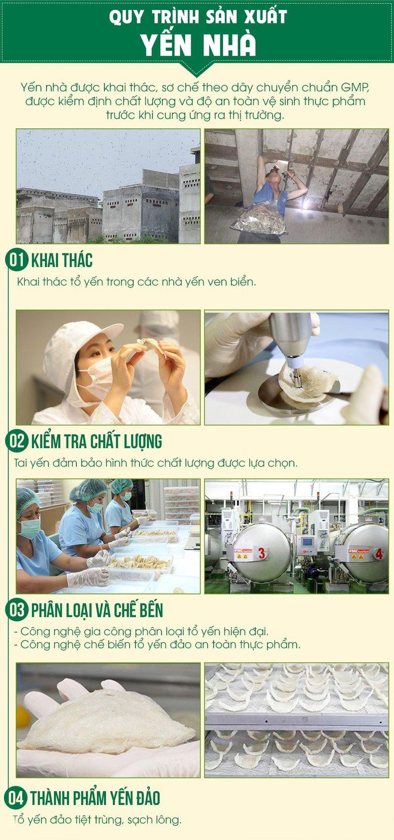 quy trình sản xuất yến nhà